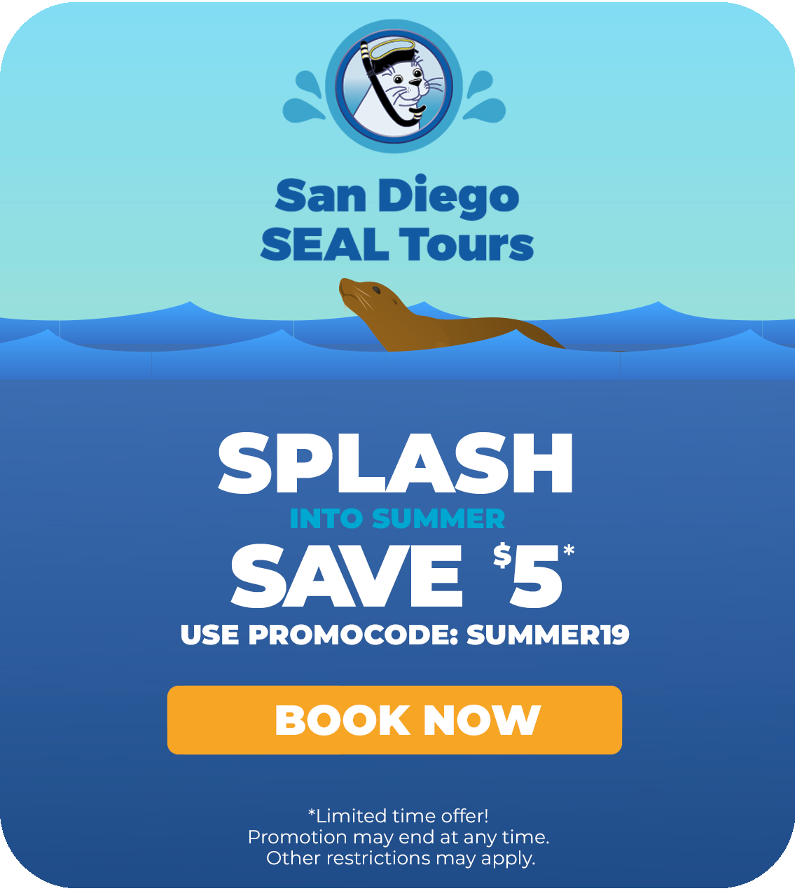 San Diego Seals & Sea Lions Guide | Best Places To See San Diego Seals