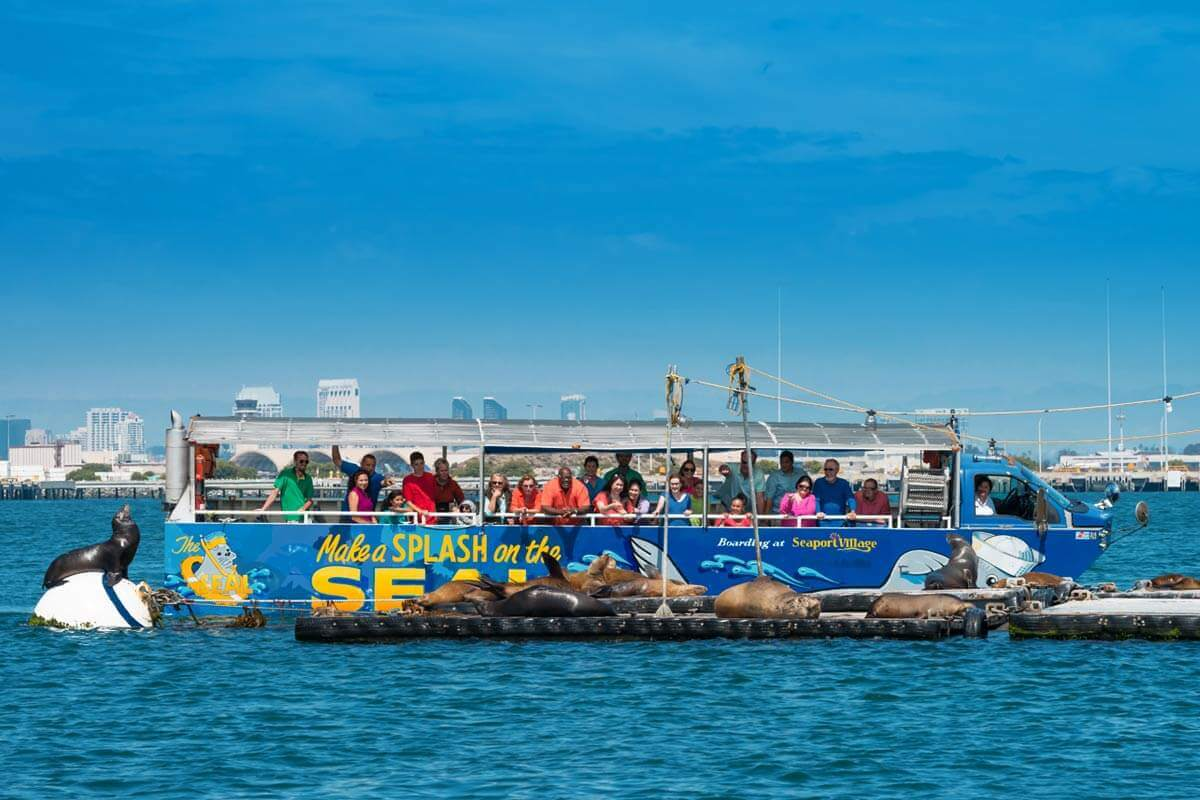 Image of San Diego tour with sea lions