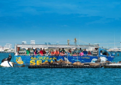 Smiling patrons leaning over the side of a floating San Diego Seal vehicle observing sea lions basking in the sun up close
